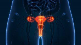 Gynekologické vyšetrenie
